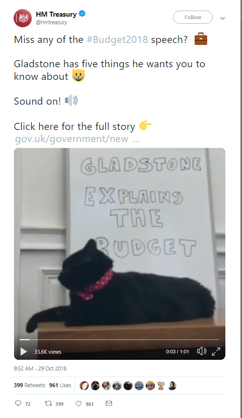 Why did the UK Treasury use a cat to inform citizens about its budget?